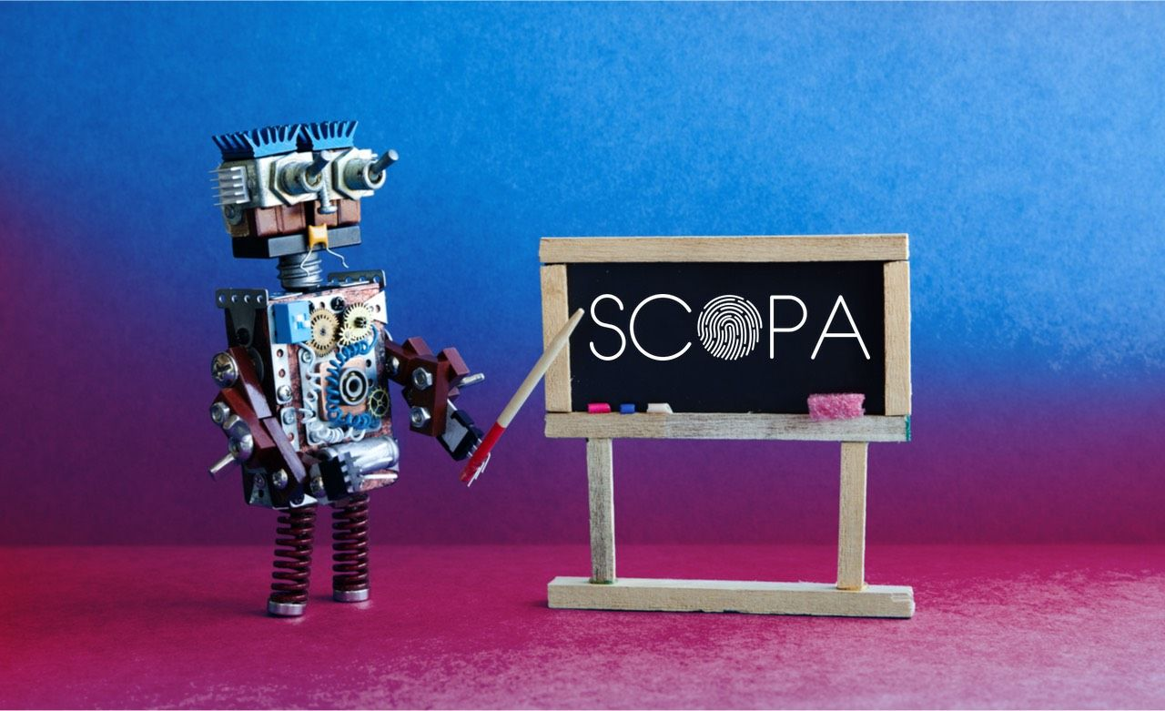 SCOPA - scalable, explainable AI